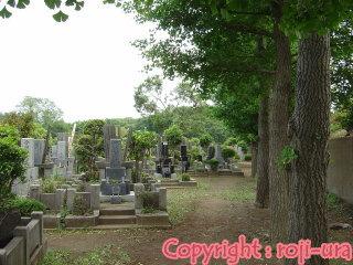 八 柱 霊園
